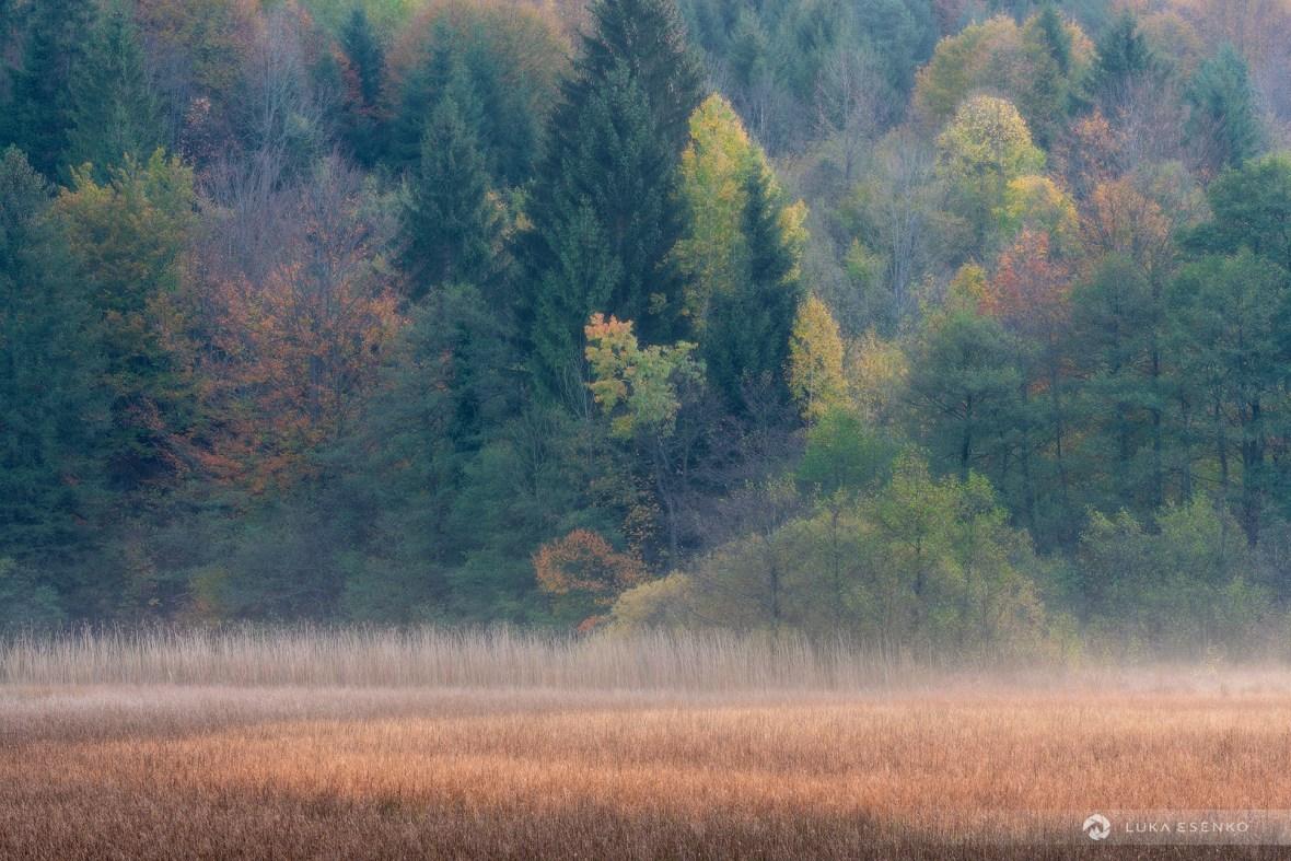 Plitvice lakes in autumn