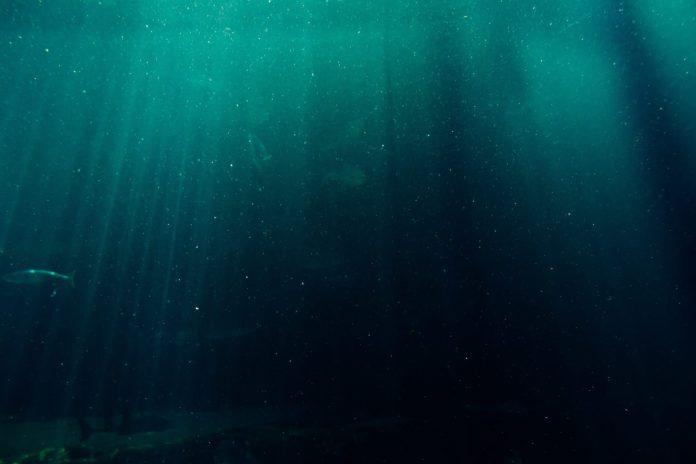 una imagen de la profundidad del mar