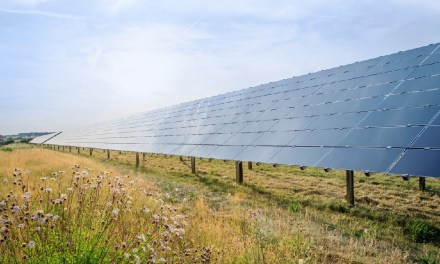 Bosch Announces Two More PPAs for Renewable Energy