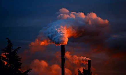 CDP and UCL Report Warns of Massive Economic Cost of Climate Inaction