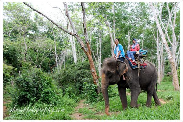 elephant-trekking-krabi04