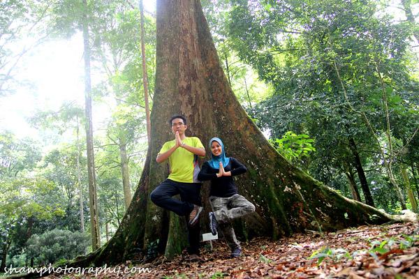 frim-kepong-hutan-simpan-bukit-lagong-alamsemulajadi-nature-hiking-20