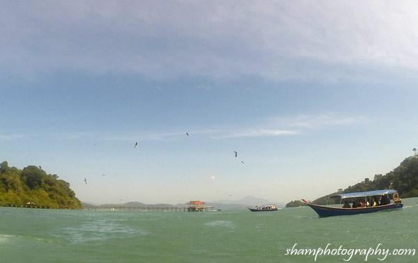 Island-hopping-langkawi-shamphotography-pulau-singa-besar-helang-feeding