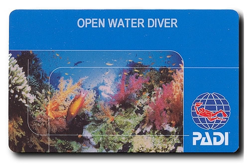 open-water-diver-lisence-shamphotography