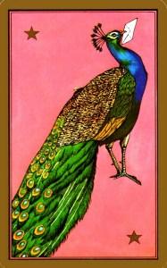Défintion du paon dans Indira