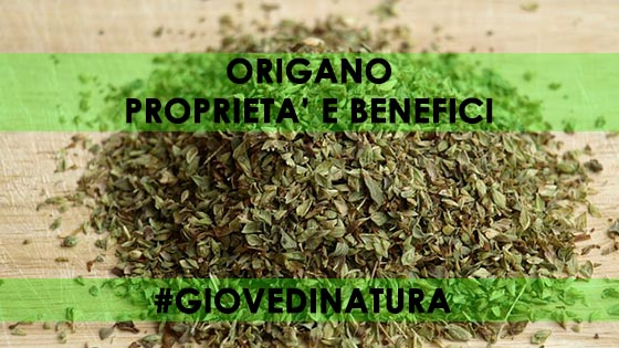 ORIGANO PROPRIETà E BENEFICI NATURALI