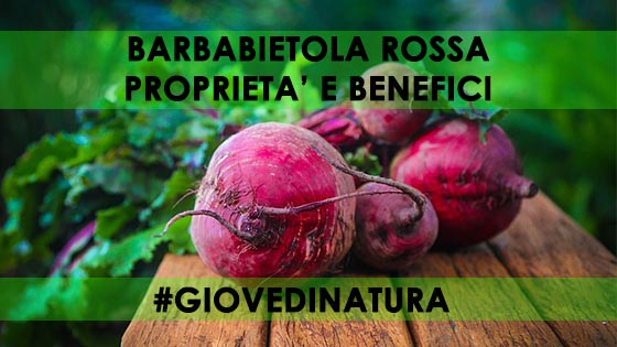 BARBABIETOLA ROSSA PROPRIETA' E BENEFICI