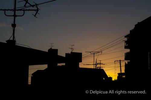nov2014_okinawa_4