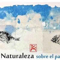 """<!--:es--> 【Cádiz】La exposición """"La naturaleza sobre el papel""""<!--:--><!--:ja--> 【カディス】魚拓展『La Naturaleza, sobre el papel』<!--:-->"""