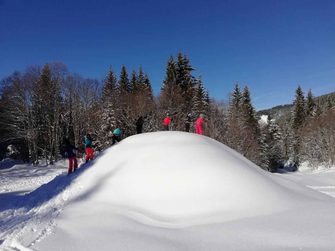 Classe 7 par monts et par vaux en ski de fond🏔️🌞❄️🎿🏔️