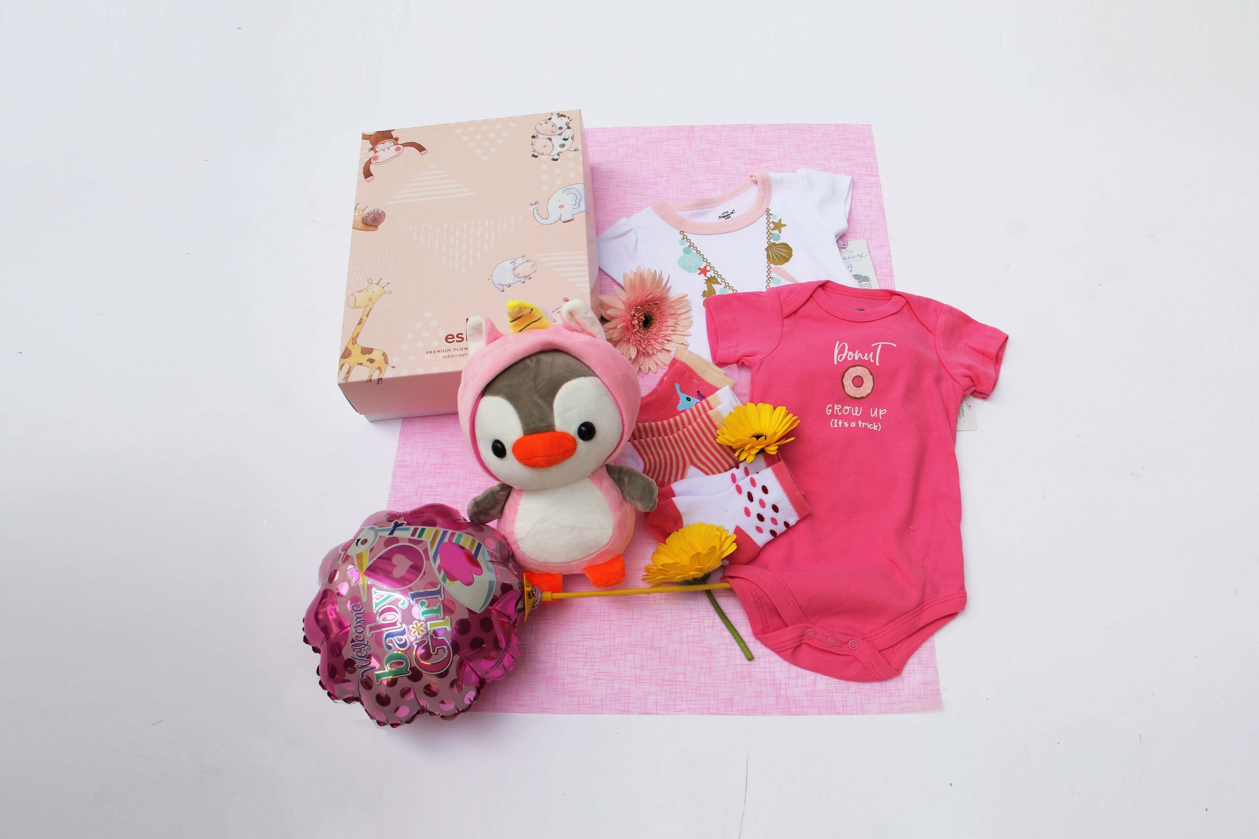 Welcome Princess | Newborn Baby Gifts | Eska Creative Gifting
