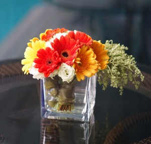 Happy Thoughts Daisies | Flower in Vase | Eska Creative Gifting