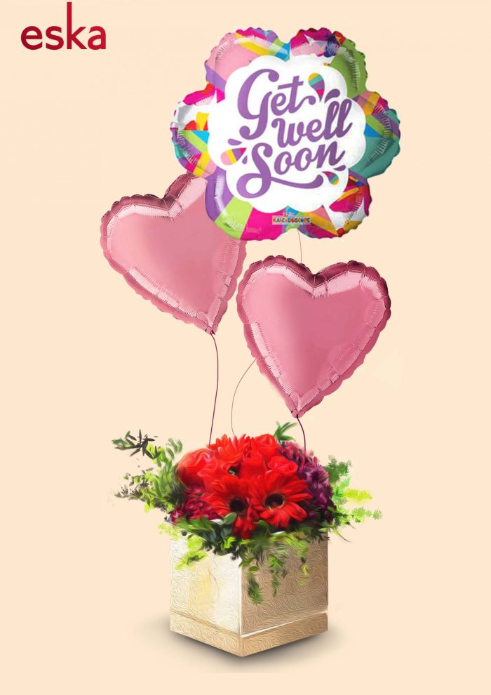 Well Wishes Red Roses & Daisies in Box | Get Well Soon | Eska Creative Gifting