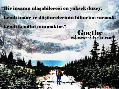 goethe-sozleri