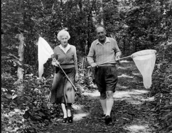 Vladimir-Nabokov-wife-Véra-Nabokov-hunting-butterfly