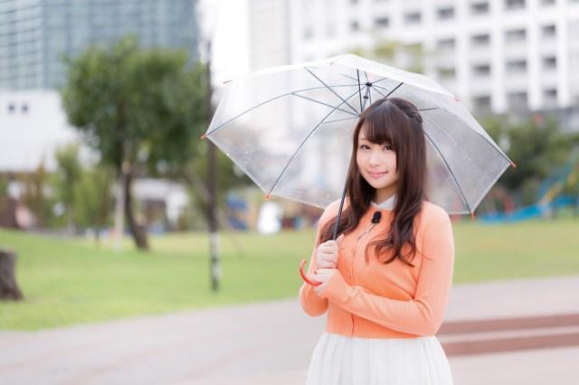 台風の報道でよく見る「風速25m以上の暴風域」ってどんな感じ?