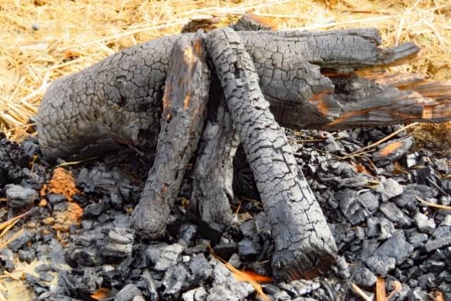 炭は土に埋めても永遠に残る