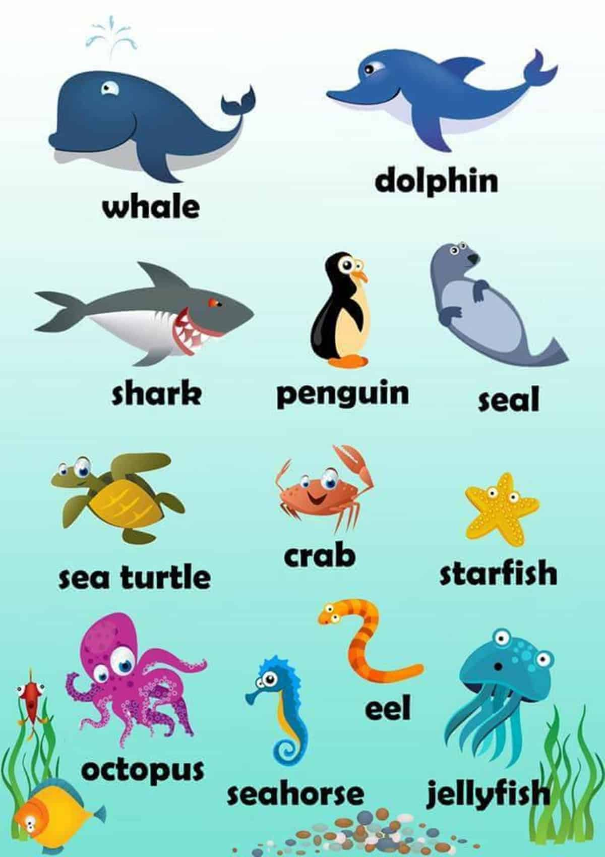 Visual Dictionary: Animals in English 15