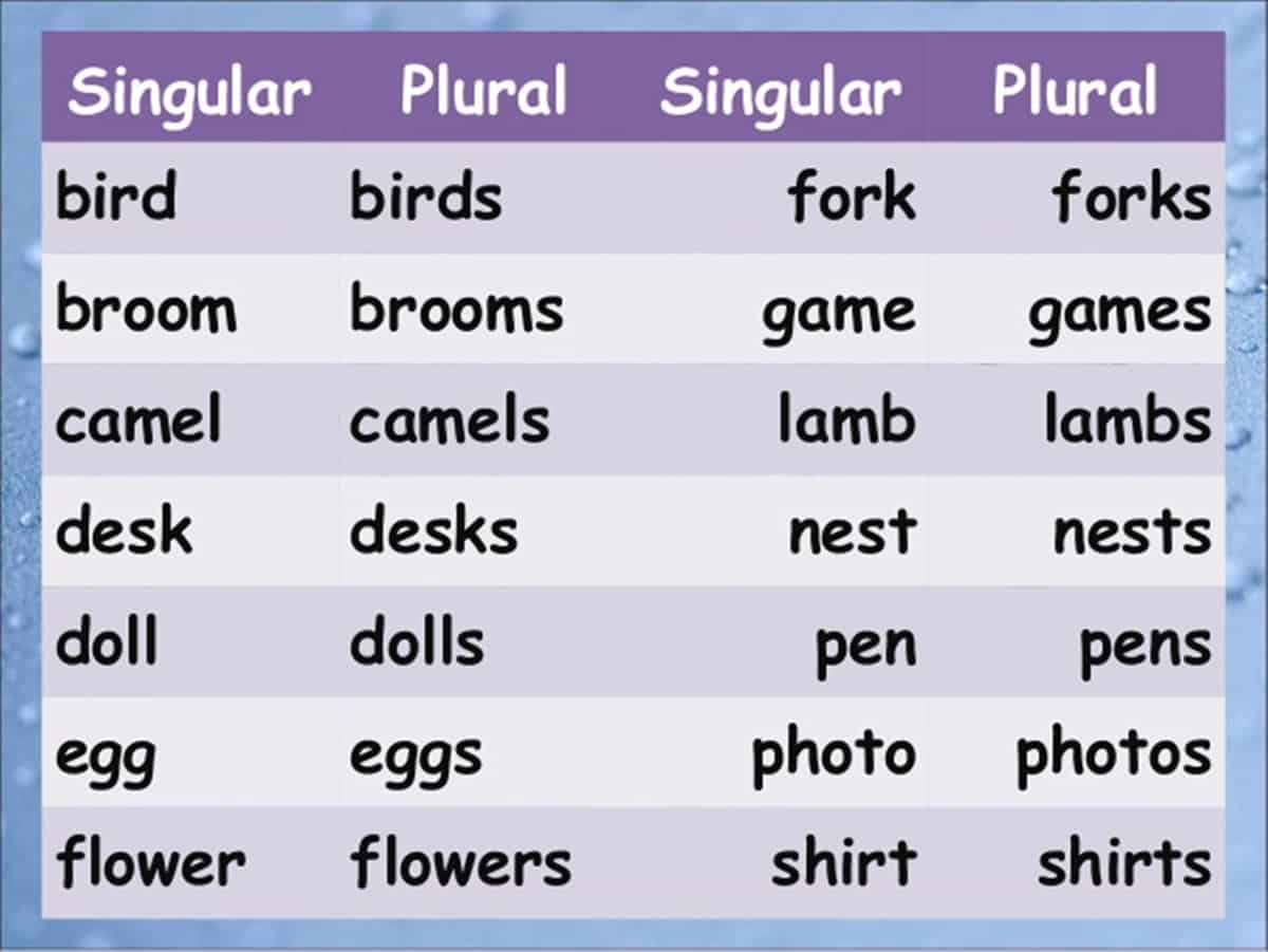 Singular & Plural Nouns: Definitions, Rules & Examples - ESL Buzz