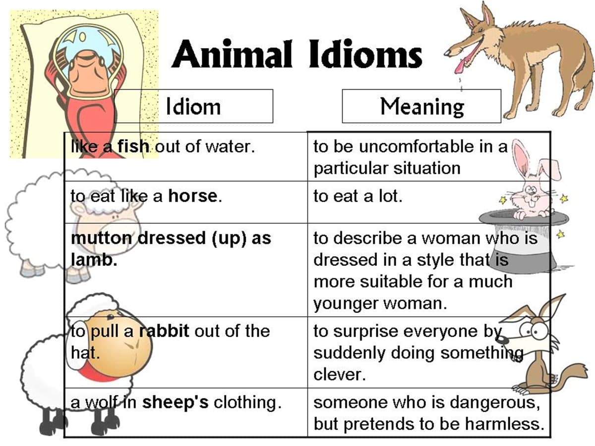 30 Amazing Animal Idioms In English With Their Meanings