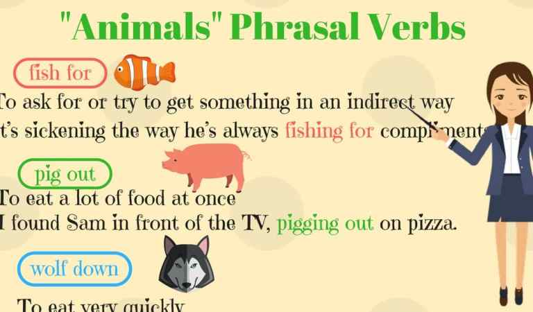 """Animals"" Phrasal Verbs in English (With Meanings & Examples)"