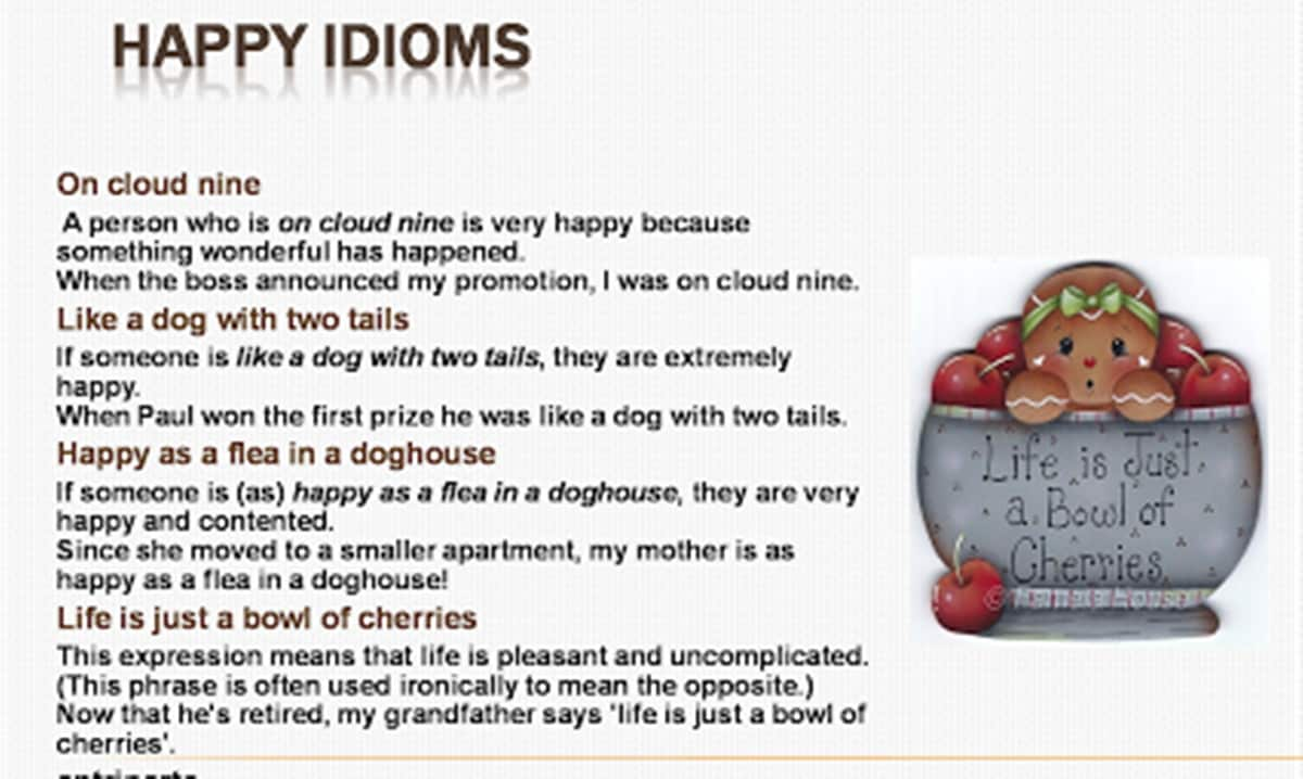50+ Most Frequently Used English Idioms 16