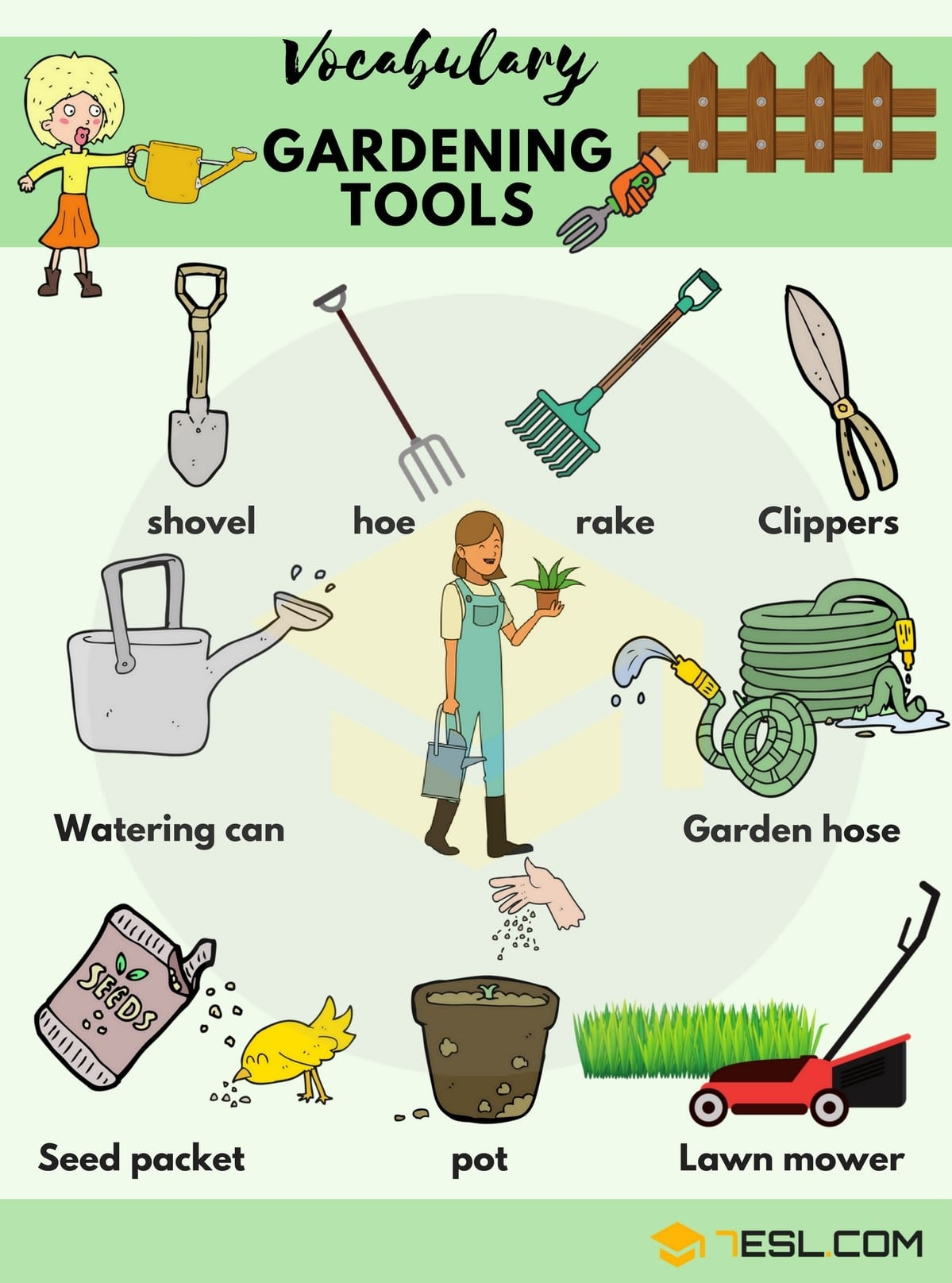 In The Garden Vocabulary In English