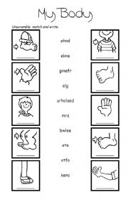 free printable parts of a body worksheets pdf # 68