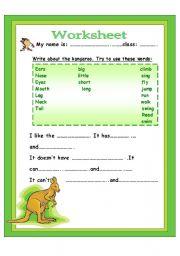 Write About Kangaroo