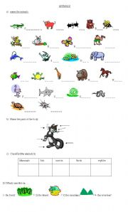 Science Animals Classification Updated W Key