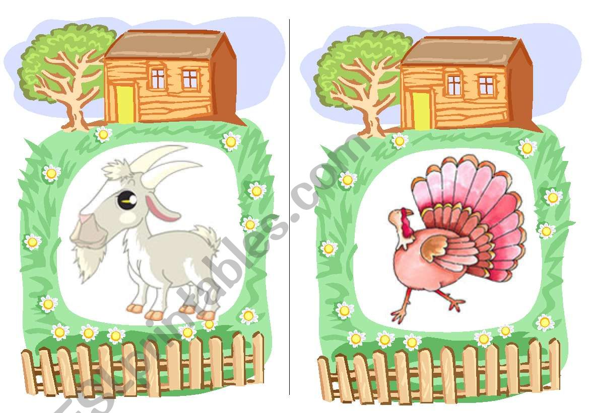 Farm Animals Flashcards 4
