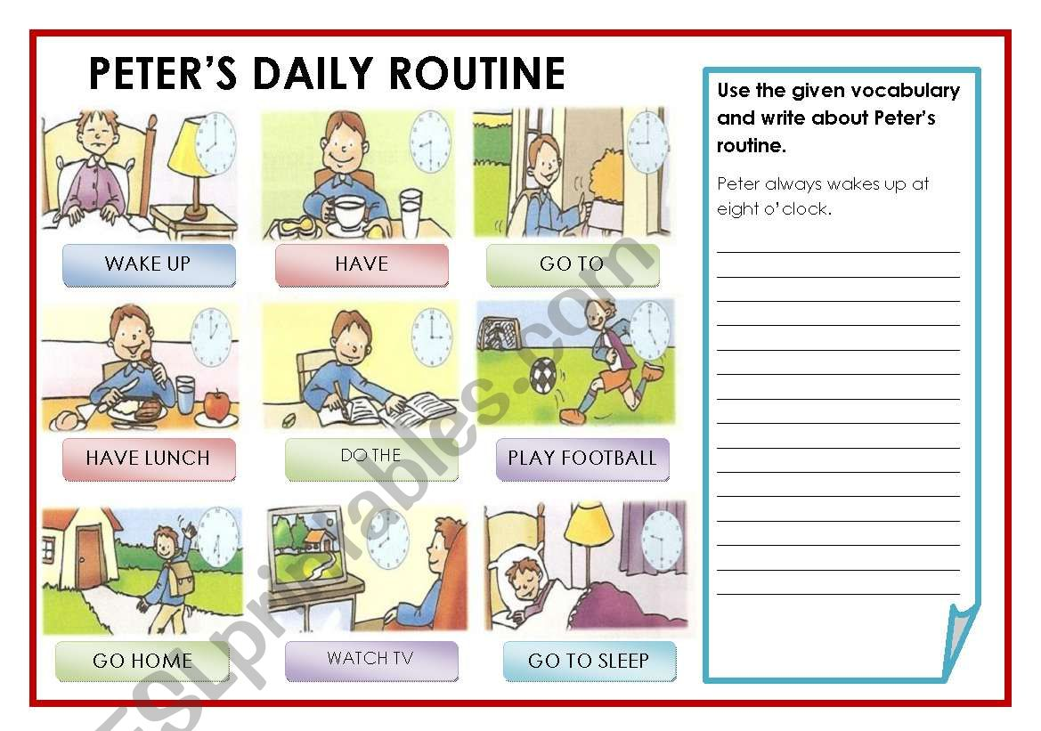 Peter S Daily Routine