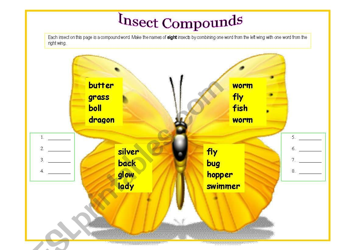Insects Compounds