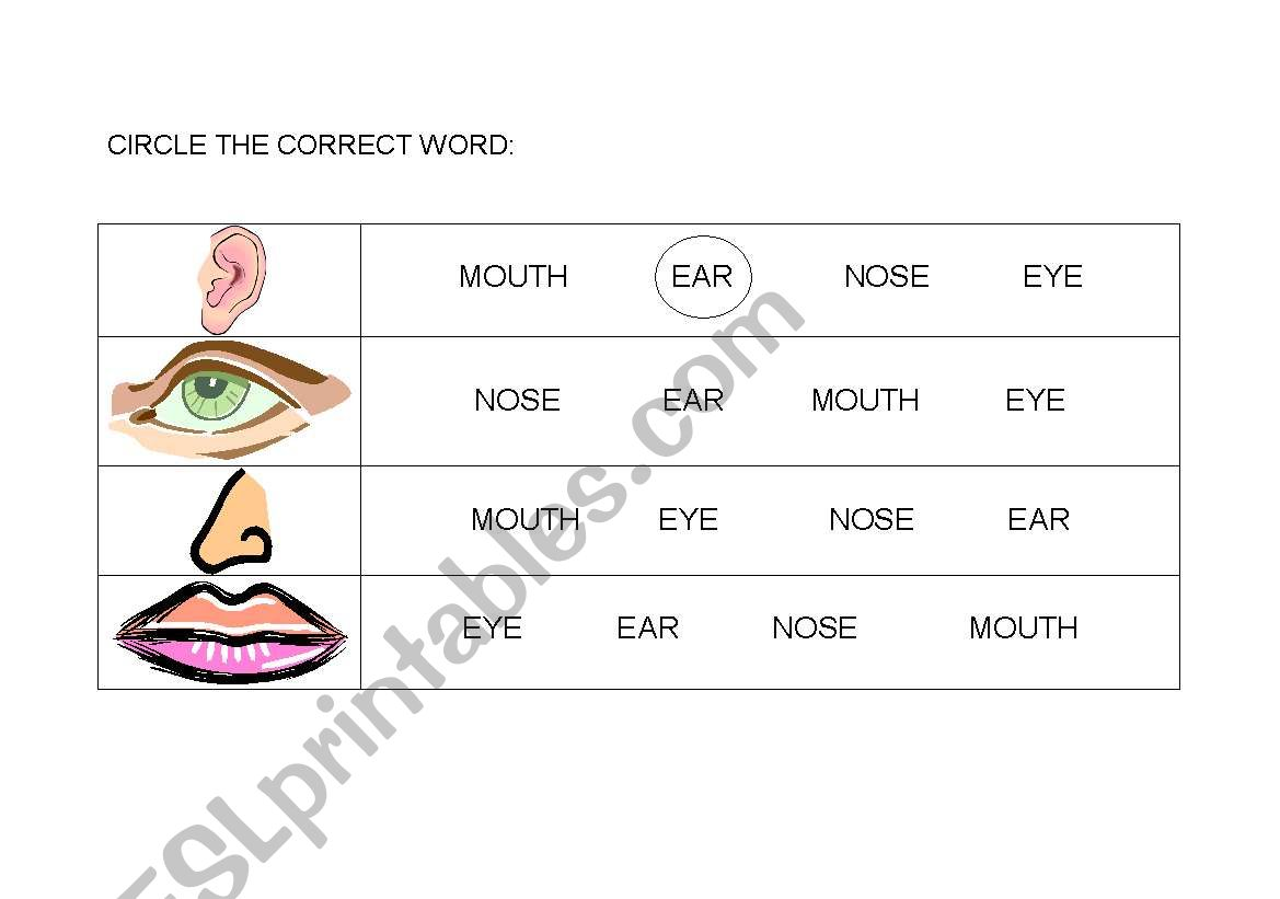 English Worksheets Circle The Correct Word