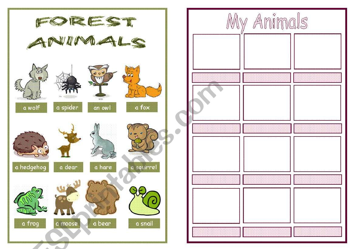 Animal Pictionary Booklet