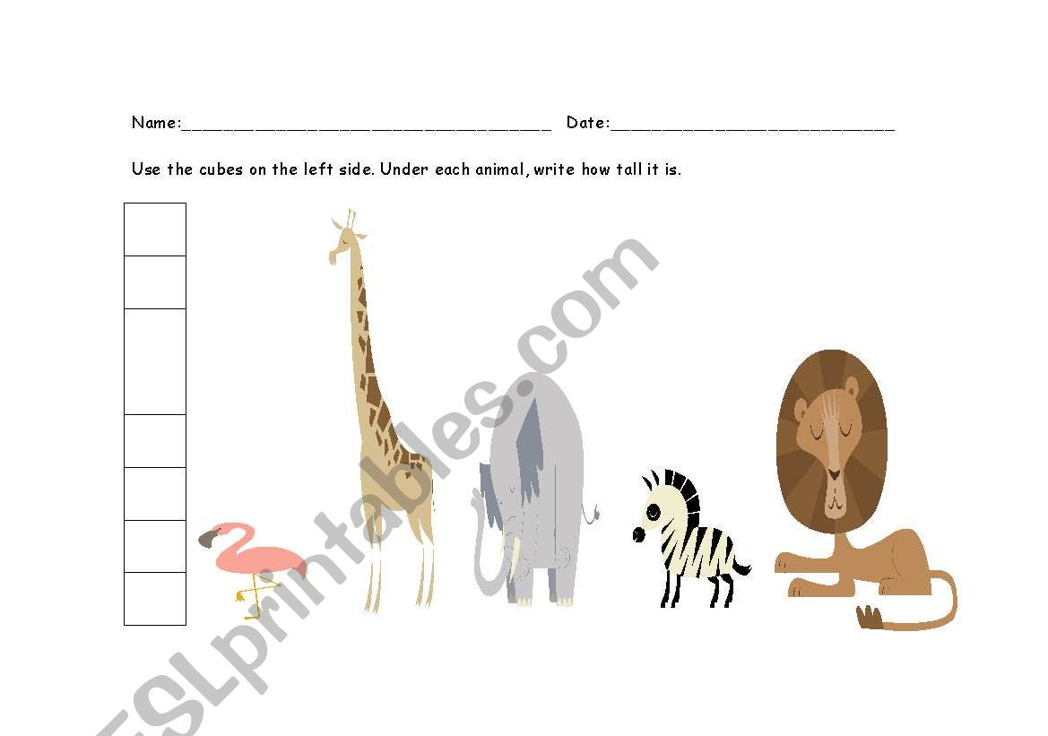 English Worksheets Animal Measurement