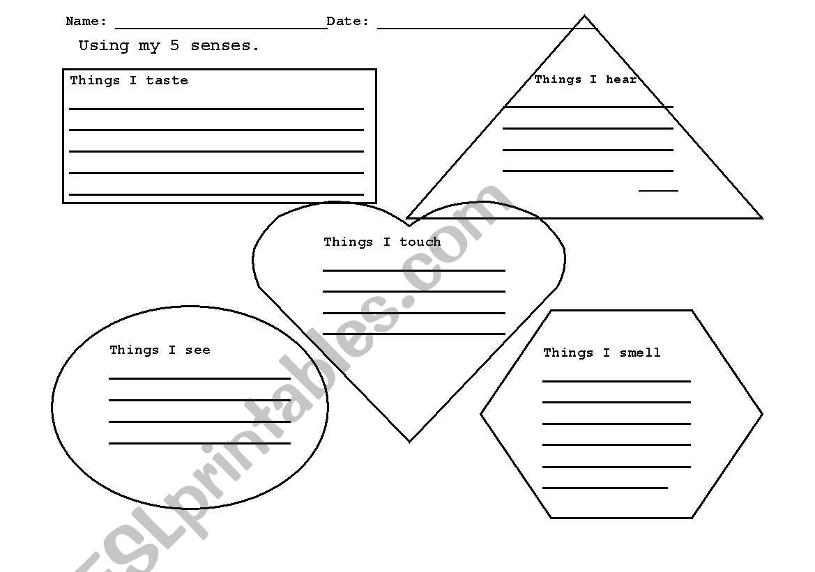 English Worksheets The 5 Sense