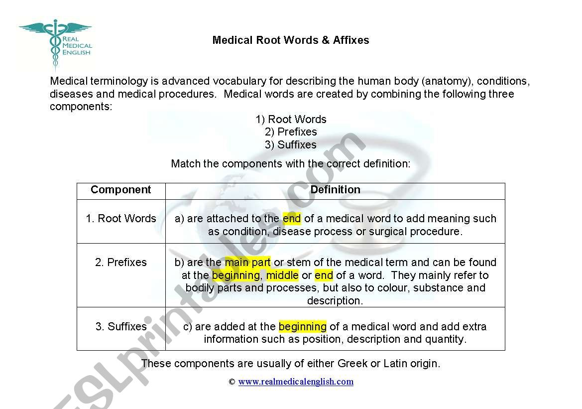 1 Medical Terminology