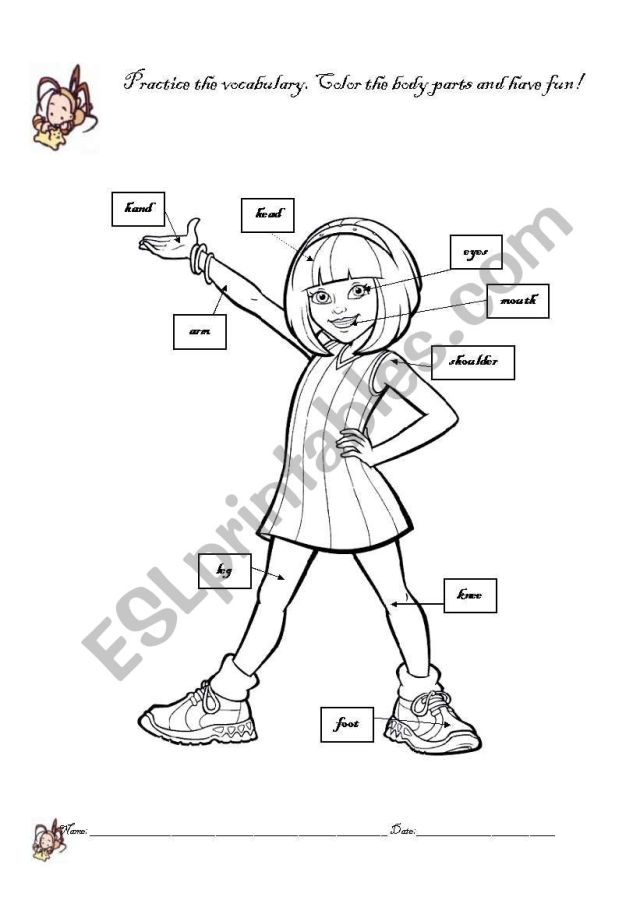 Girl body parts coloring page - ESL worksheet by ladelmar
