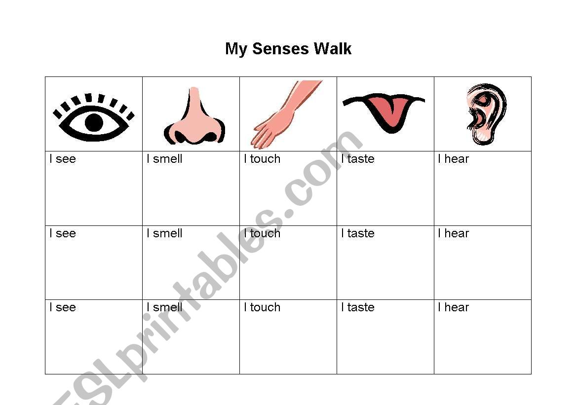 My Senses Walk