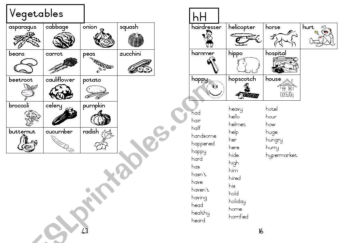 A5 Picture Dictionary 17