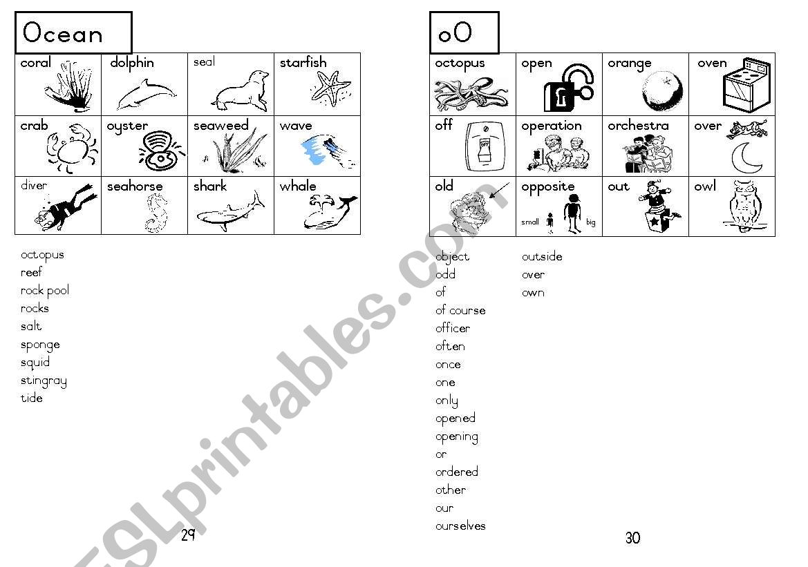 A5 Picture Dictionary 30
