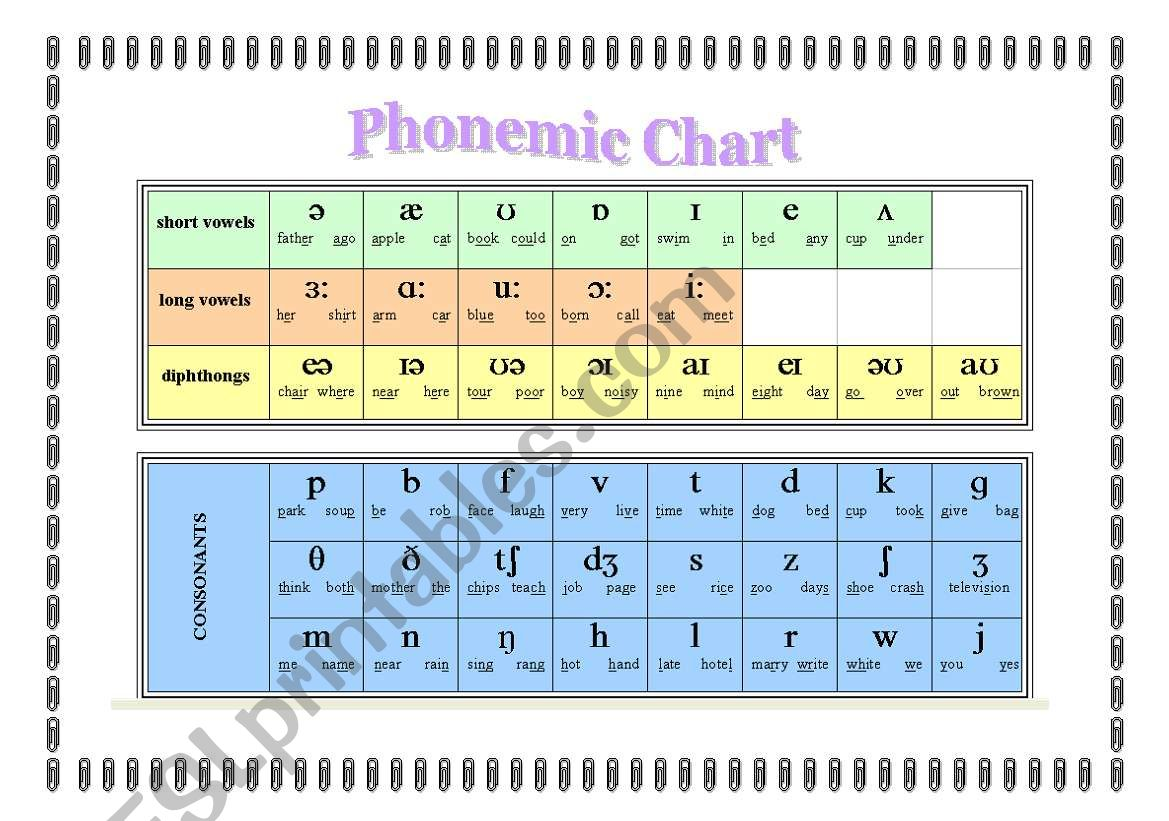 Phonetic Vowels Worksheet