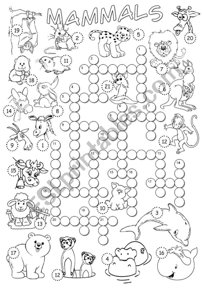Mammals Crossword