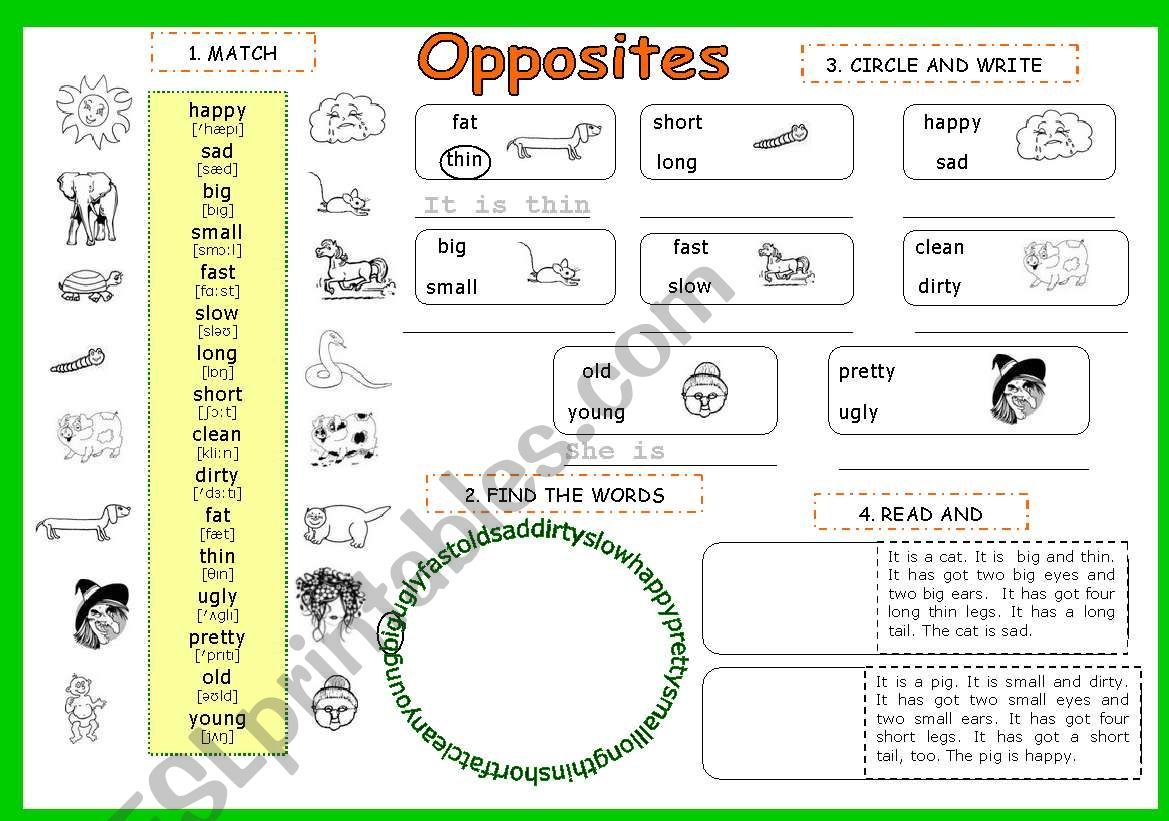 Opposite Adjectives 3 Pages
