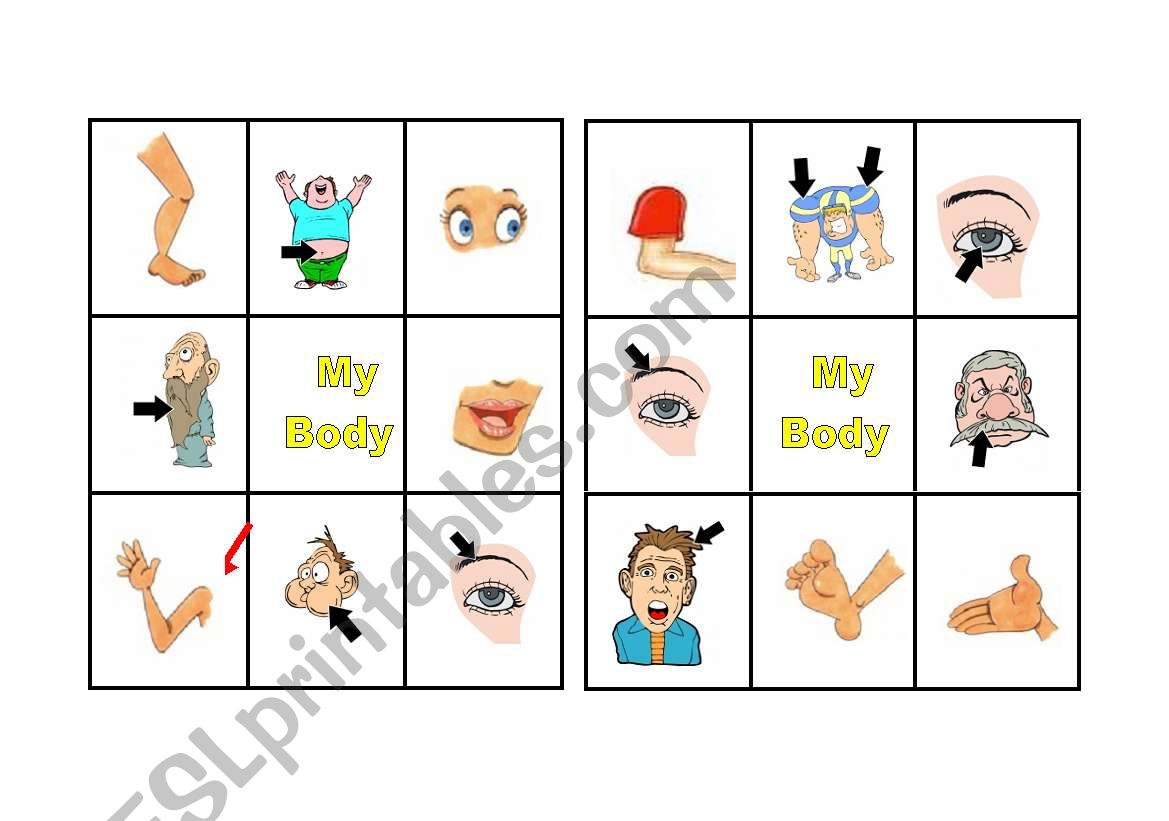 Bingo Body Parts 2 Of 3