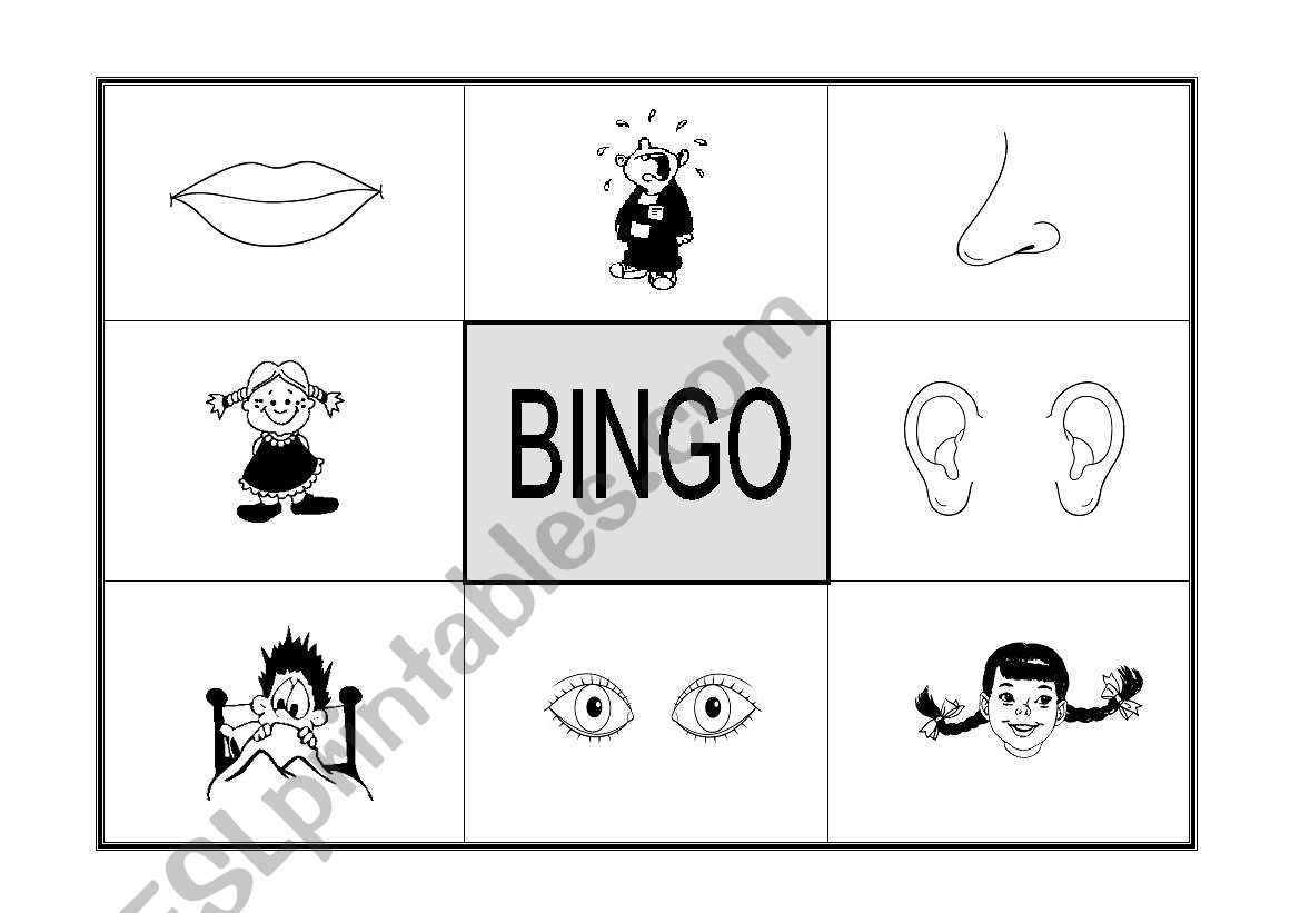 Bingo Parts Of The Face And Feelings