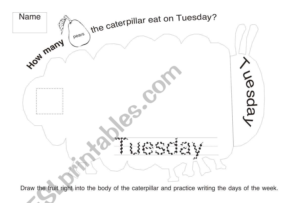 The Very Hungry Caterpillar Worksheet 2
