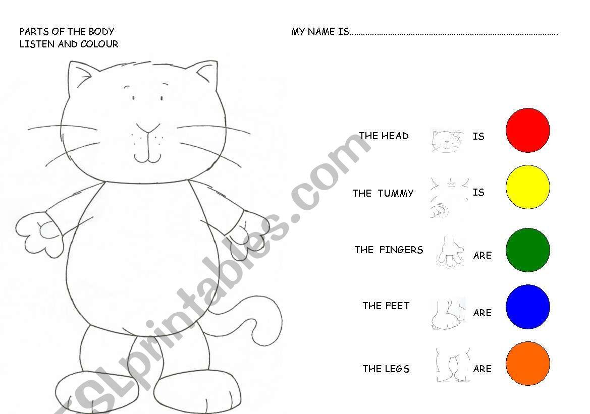 Body Parts Worksheets For Kindergarten Worksheet