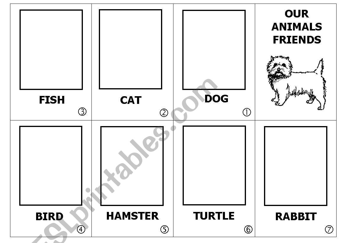Pets Mini Book